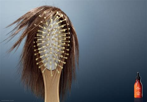 hair ads 25 creative and brilliant advertisement design exles