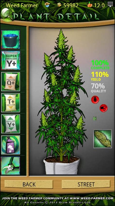 Marijuana Growing Ls by Farmer Overgrown Android Apps On Play