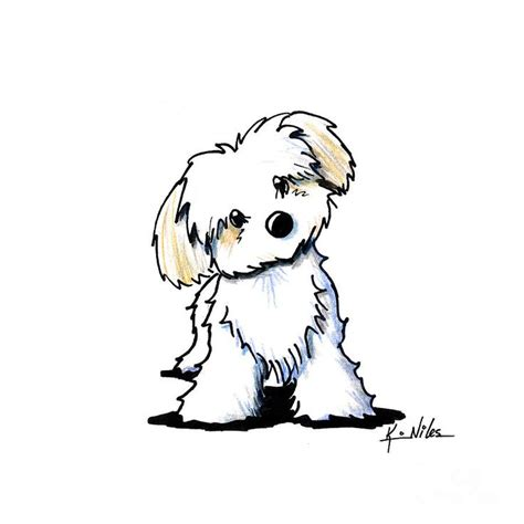 havanese dog coloring page 25 best ideas about cartoon dog on pinterest cartoon