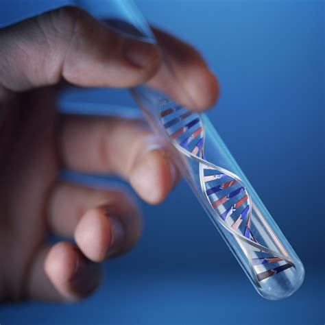 dna testing test smartly labs of s summit home dna test