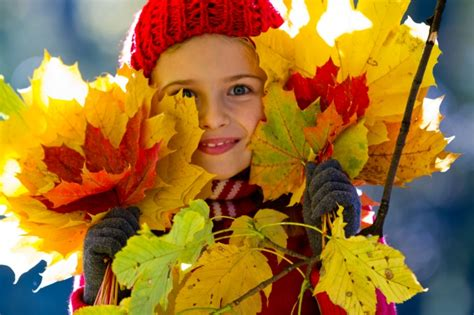 5 Great Fall Crafts for Kids   Home Wizards