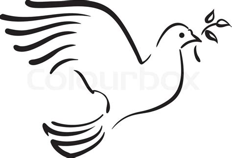 vector white dove with branch stock vector colourbox