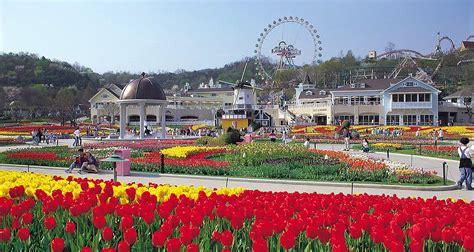 theme park zoo zoo korea everland theme park live your passion