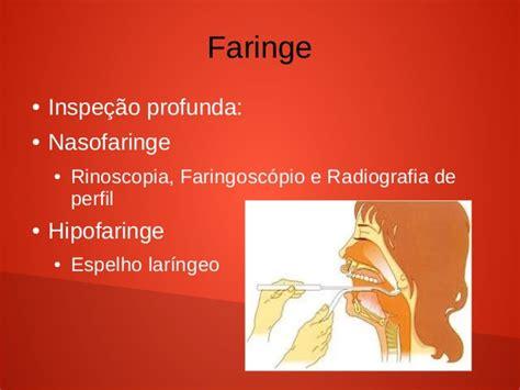 ee af omi anatomia fisiologia e propedeutica de faringe e laringe