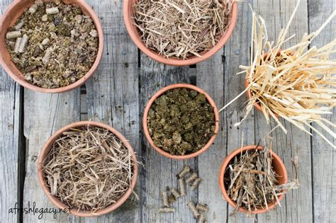 what is the best mulch for a vegetable garden what is the best mulch for a vegetable garden