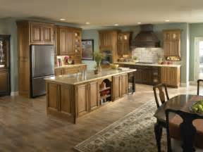 Paint Color For Kitchen With White Cabinets oak kitchen cabinet ideas decormagz pictures new color