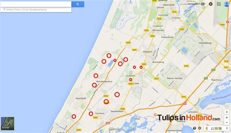 netherlands bicycle map weekly flower update week 17 tulips in