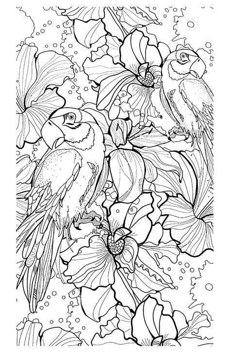 coloring book birds and flowers stress relief coloring book garden designs mandalas animals florals and paisley patterns books free coloring page 171 coloring difficult parrots