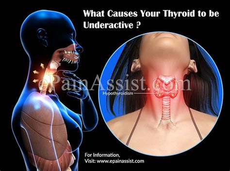underactive thyroid mood swings what causes your thyroid to be underactive hypothyroidism
