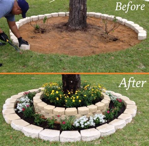 yard tree best 25 front yard landscaping ideas on yard