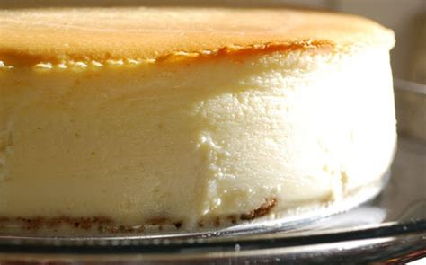 goat cheese cheesecake lemon goat cheese cheesecake images frompo