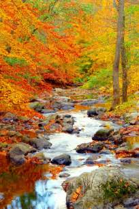 fall landscape best 25 fall landscape ideas on autumn