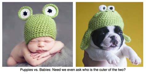 puppies vs babies programming the second screen social tv strategies from discovery and usa networks