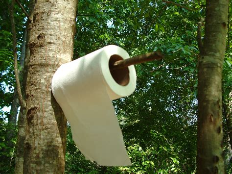 Paper From Trees - trick or treat top 5 best toilet papers for