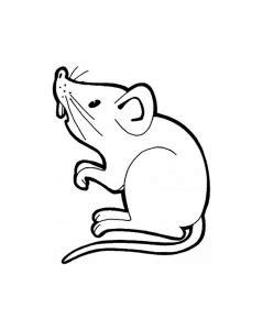 coloriage souris coloriages pour enfants