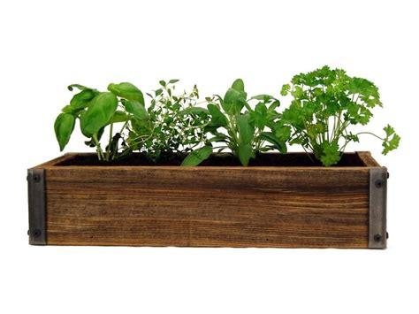 put house plants herbs garden  images
