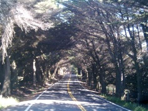 mendocino ca highway  photo picture image