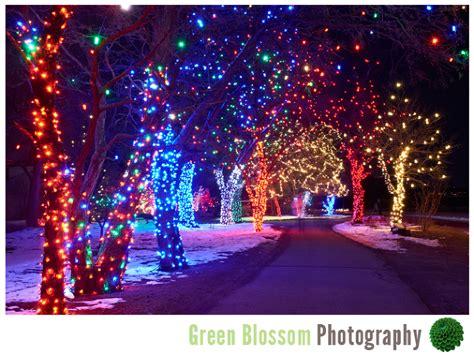 denver botanic gardens lights denver botanic gardens lights photo album best