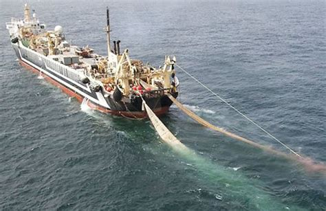 fishing boat of india var illegal fishing a problem in indian ocean omani vessels