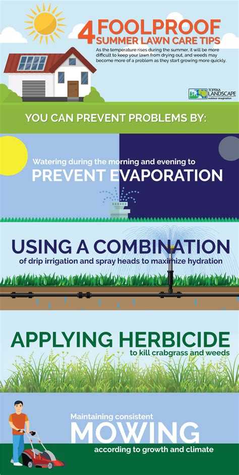 summer lawn care tips infographic summer lawn care tips how to keep yard