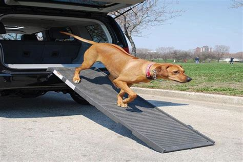 best suv for dogs best car or suv for dogs upcomingcarshq