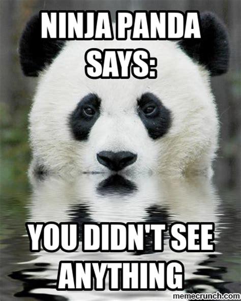 Meme Panda - ninja panda words of wisdom