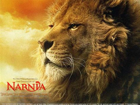 narnia film lion final conflict narnia nick clegg and why 70 need to