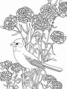 bird among beautiful flowers coloring page color luna