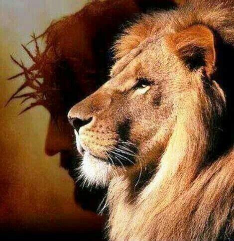 imagenes cristianas leones el le 243 n de jud 225 igreja kairos pinterest le 243 n de