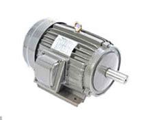 Dinamo Electromotor Hitachi jual harga spesifikasi elektromotor 3 phase indoteknik