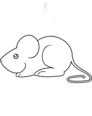 mouse template mouse activities