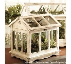 tabletop greenhouse terrarium for growing herbs shade house patoka school