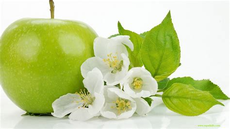 wallpaper apple fruit green apple hd wallpapers