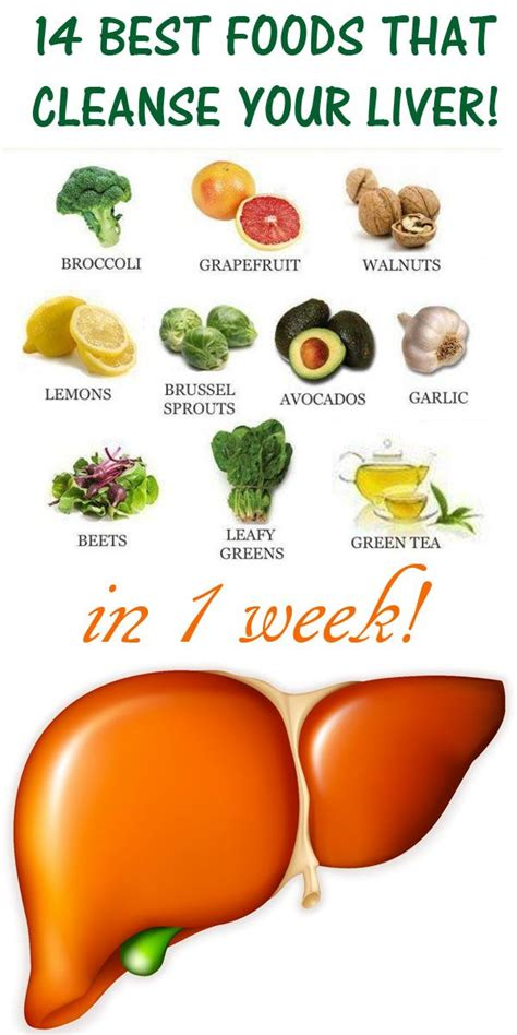 7 Foods To Detox Liver by 656 Best Images About Healthy Care On