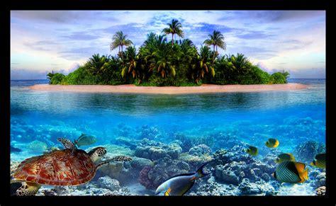 imagenes increibles bajo el mar im 225 genes de paisajes en el mar