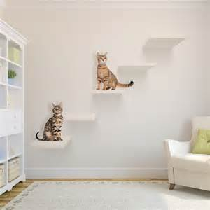 wall shelves for cats 25 best ideas about cat shelves on cat wall
