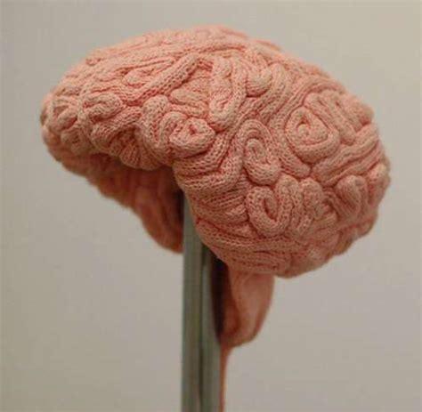brain hat template cerebral winter wear brain hat