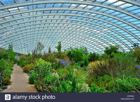 National Botanical Gardens Wales Inside The Dome At The National Botanic Garden Of Wales Llanarthne Stock Photo Royalty Free