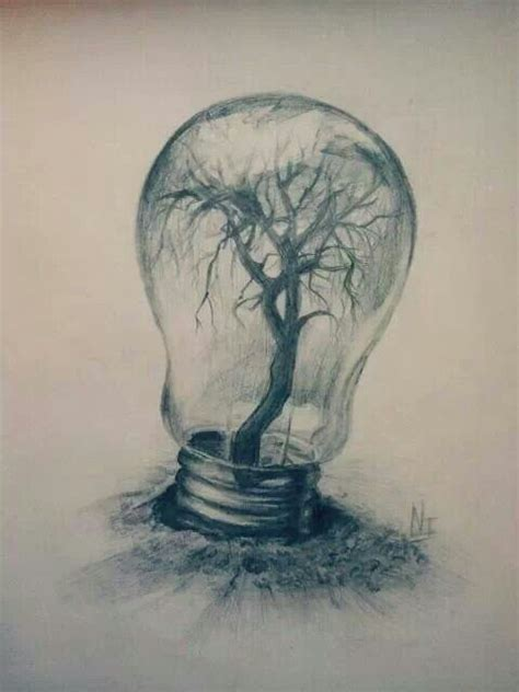 libro drawn to nature a tree inside a light bulb metamorphosis technology nature and look at