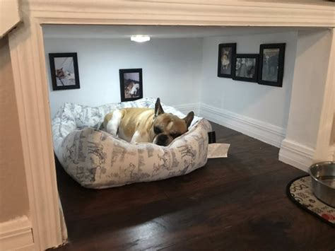 dogs sleeping in bedroom this man built an entire bedroom under the stairs for his