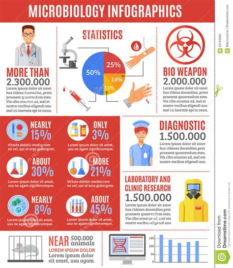 infographic for biography infographic microbiology researches stock vector image