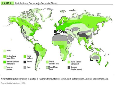 biome map with country names biome distribution map biomes and ecosystems of the