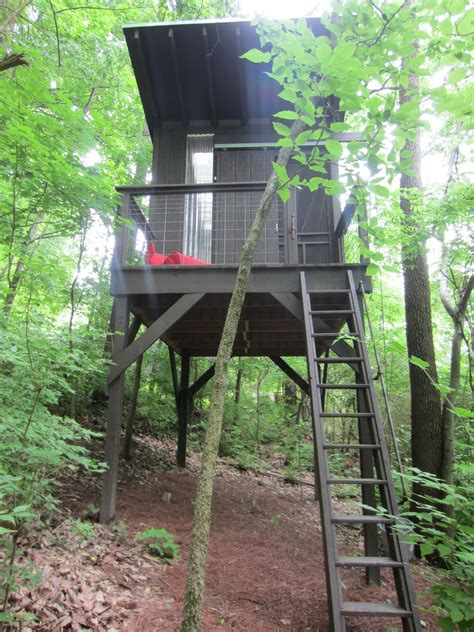 treehouse on stilts callforthedream