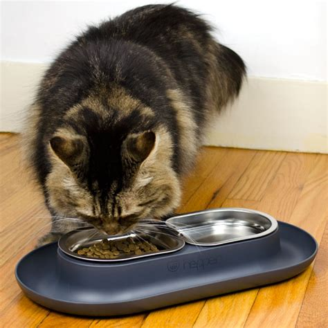 Hepper Cat Bowls   Buy a Modern NomNom Cat Food Bowl for