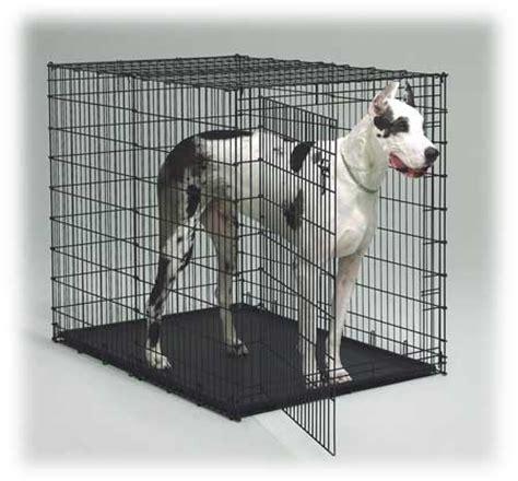 xxxl crate midwest crates 54 inch crate crates for a great dane mastiff