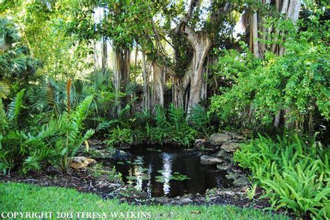 backyard botanical garden tropical waterfall and pond florida travel mckee