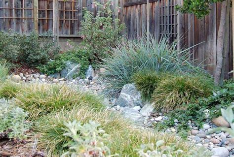 Garden Creek by How To Create A Creek Bed Garden J N Roofing