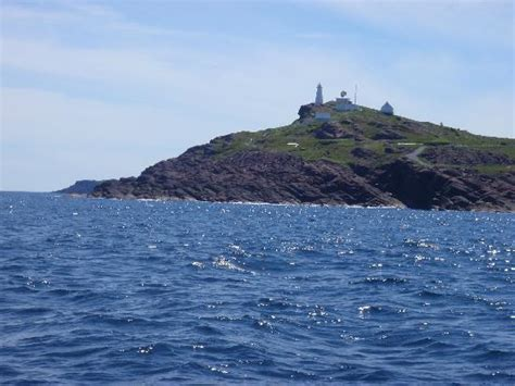 rugged scenery scenery was rugged picture of iceberg quest tours st s tripadvisor