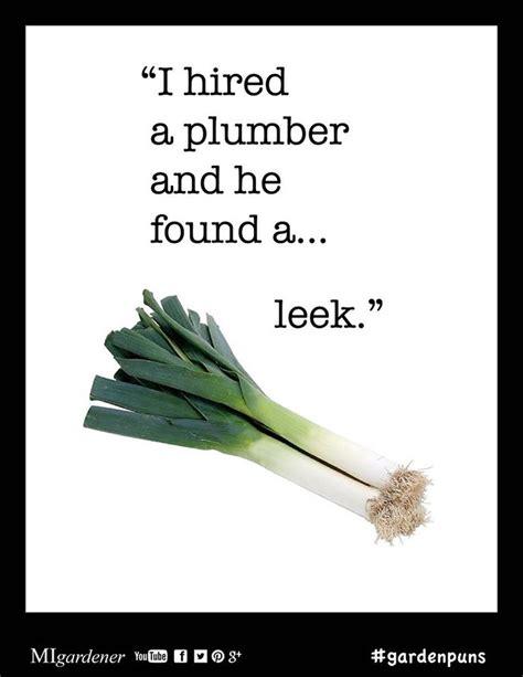 Leek Meme - 15 best images about garden puns jokes on pinterest