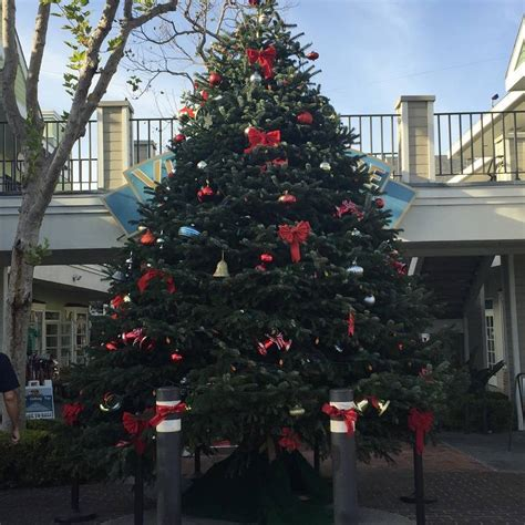 carlsbad offers free christmas tree recycling til jan 9